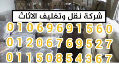 صورة ونش رفع الاثاث فى حدائق الاهرام|01069691560